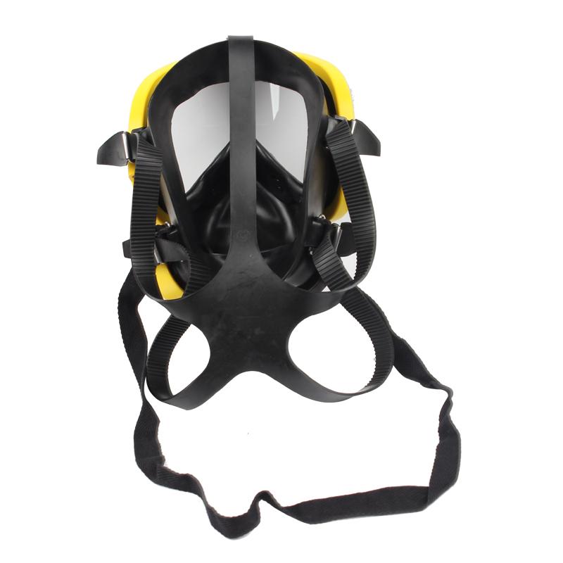 霍尼韦尔1710397 PANO呼吸器面罩
