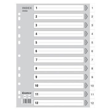 齐心 易分类年度索引纸,IX894 A4 12页1-12 11孔 PP 灰 单位:套