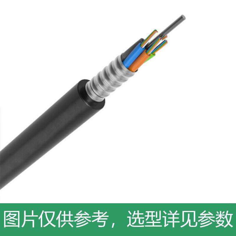 海乐(Haile)24芯阻燃重铠地埋光缆 层绞式GYTZA53-24B1单模室外铠装G652D线芯 HT220-24SA 100米