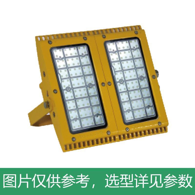 尚为 LED应急泛光灯,SZSW7350E-160W,不含安装附件,单位:个