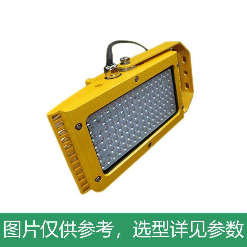 尚为 LED应急泛光灯,SZSW7350E-80W,不含安装附件,单位:个