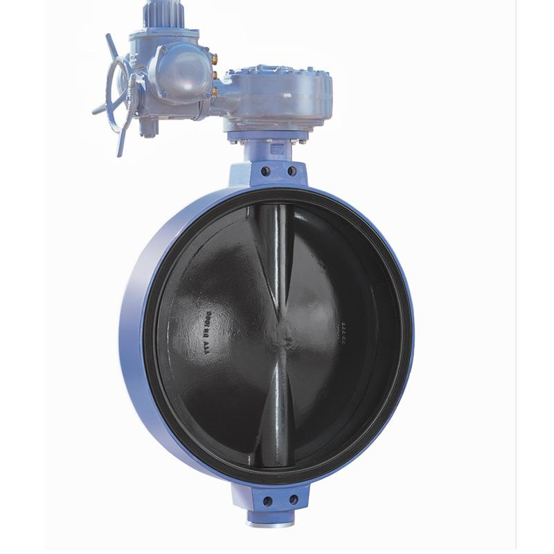 TTV 电动蝶阀,W0DE10D-TTV,DN250,对夹式,不含执行器