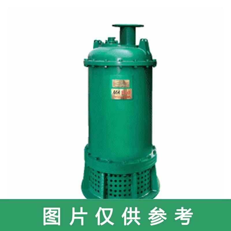 心传 矿用排沙泵,BQS100-77-37/N