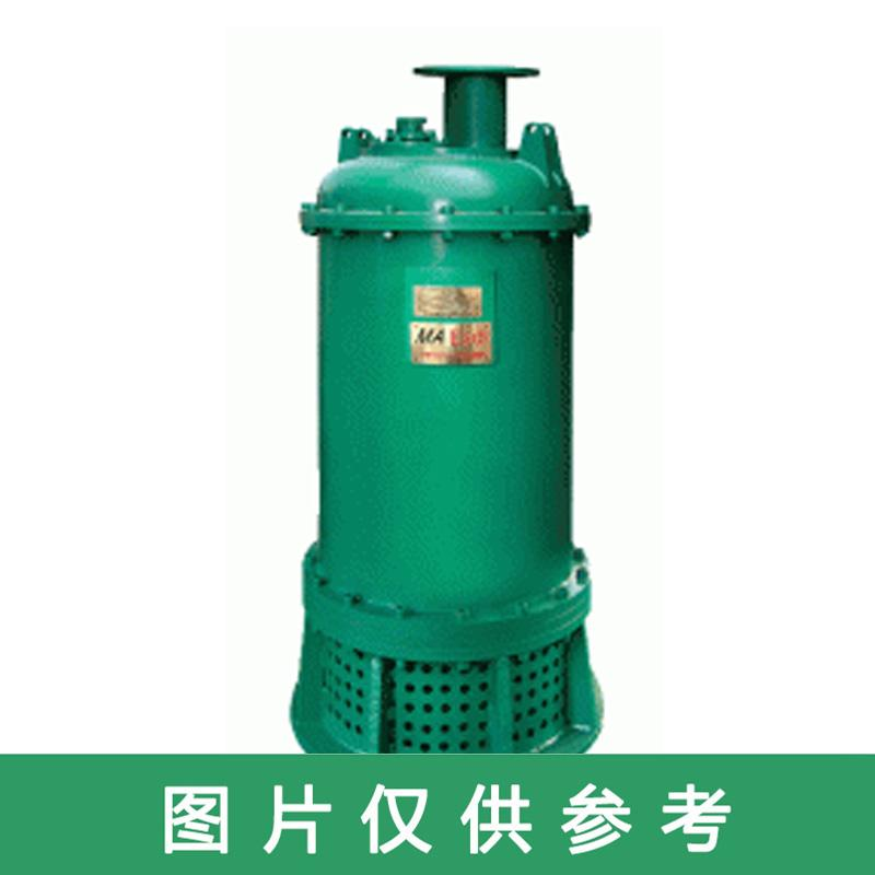 心传 矿用隔爆型潜水排沙电泵,BQS30-105/2-22/N
