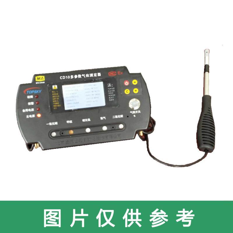 北京凌天 便携式多功能气体检测报警仪,CD10(A)