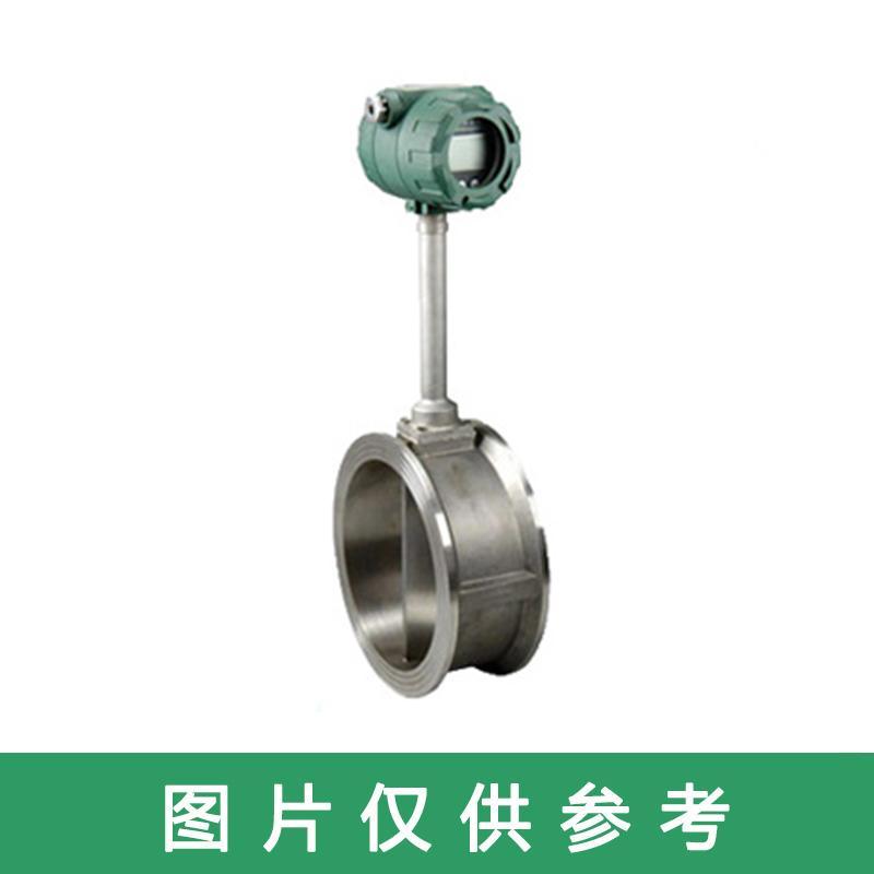江苏智瑞 涡街流量计,HVZR-VF-CO DN200 不锈钢夹持式
