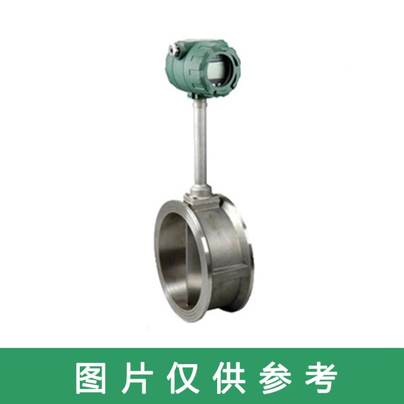 江苏智瑞 涡街流量计,HVZR-VF-CC DN100 不锈钢法兰式
