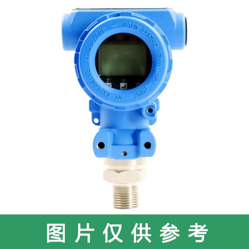 罗德玮格 压力变送器标准型,LWSP100.1