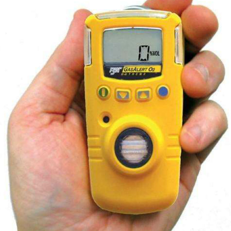 BW GAXT-S-DL单一气体检测仪(SO2)
