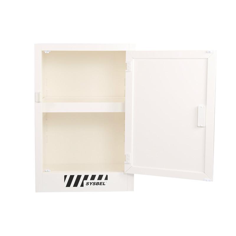 SYSBEL西斯贝尔 ACP810012 强腐蚀性化学品存储柜